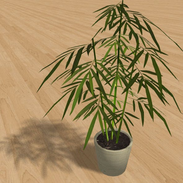 "Low-Poly Interior Plant ""Bamboo"" - 3DOcean Item for Sale"
