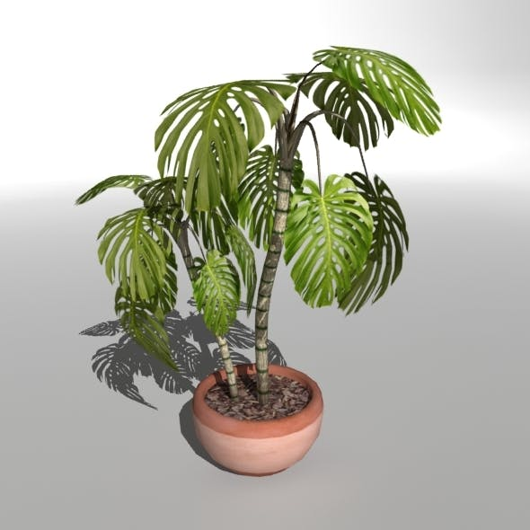 "Low-poly Plant ""Philodendron"""