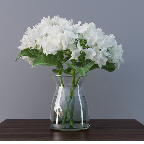Hydrangea Flower In Vase 3D Model