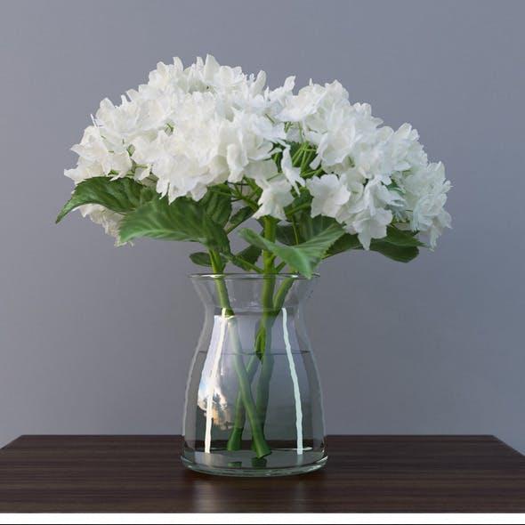 Hydrangea Flower In Vase 3D Model