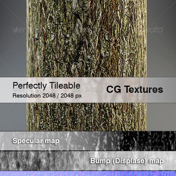 Realistic Willow Bark Textures