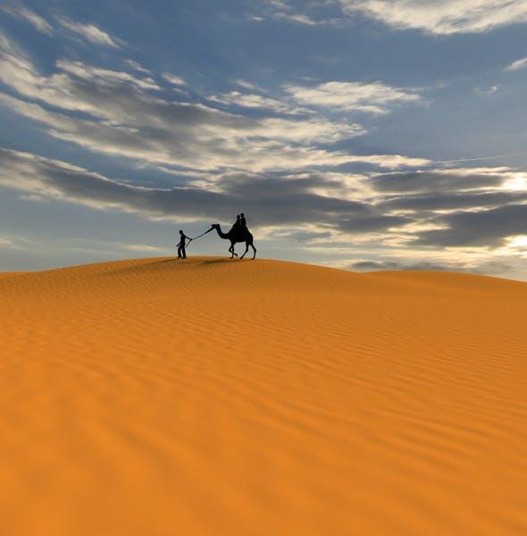 Desert Environment - 3DOcean Item for Sale