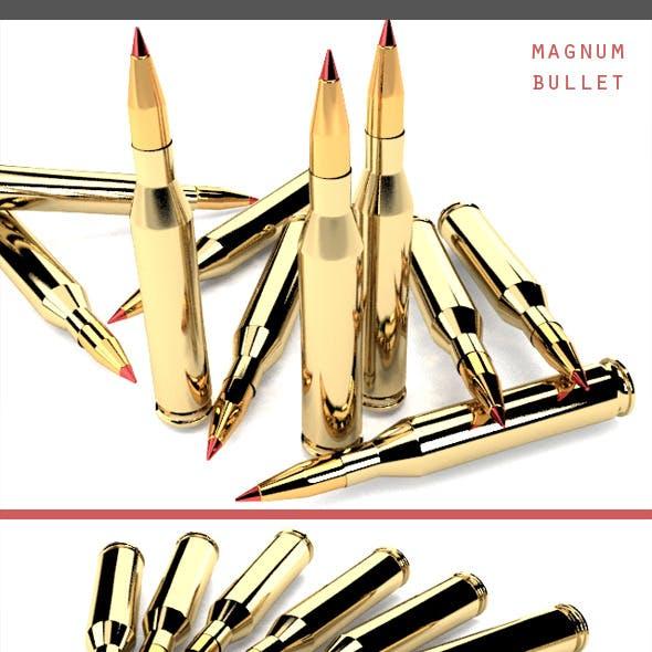 Magnum Bullet