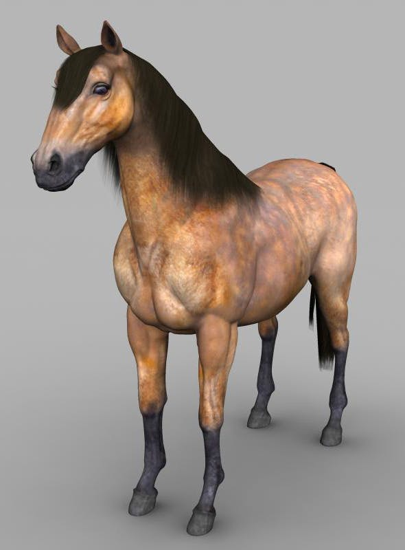 Realistic Muscular Horse - 3DOcean Item for Sale