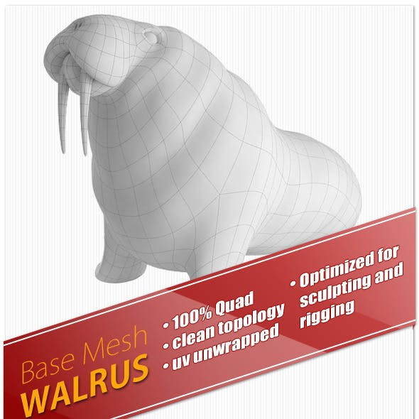 Walrus Base Mesh