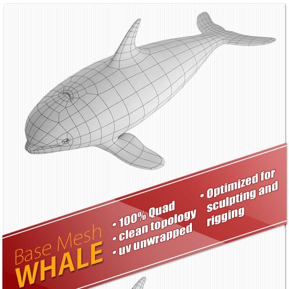 Whale Base Mesh