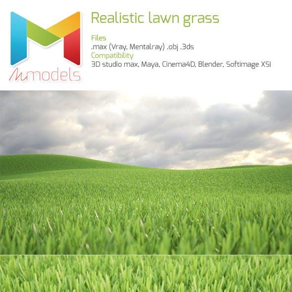 Realistic Lawn