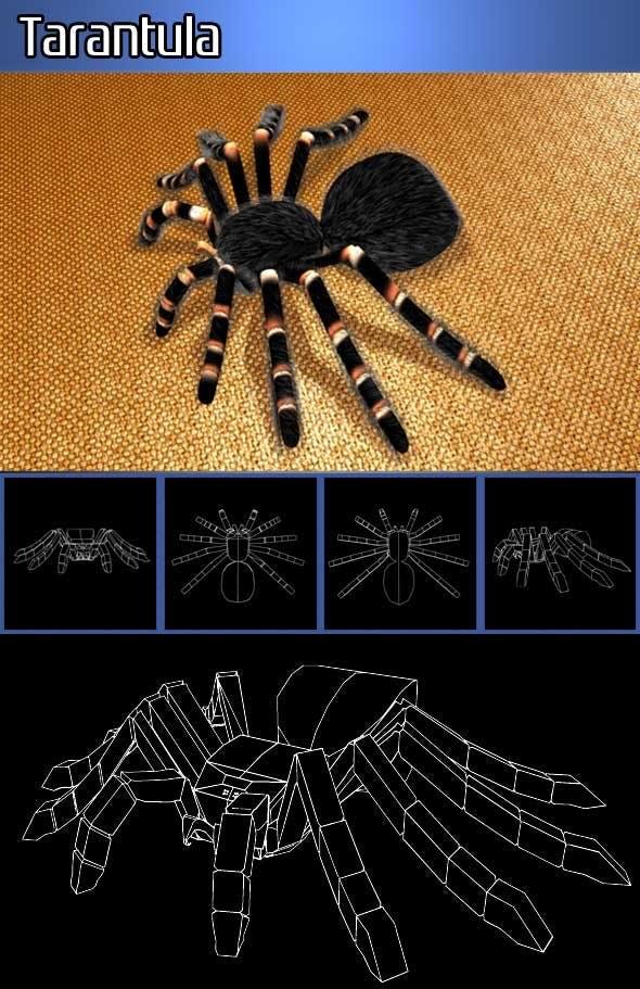 Tarantula - 3DOcean Item for Sale