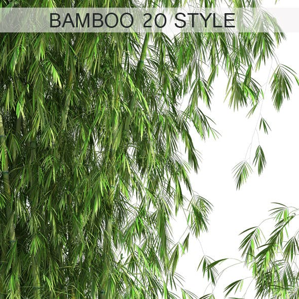 20 Style of Bamboo