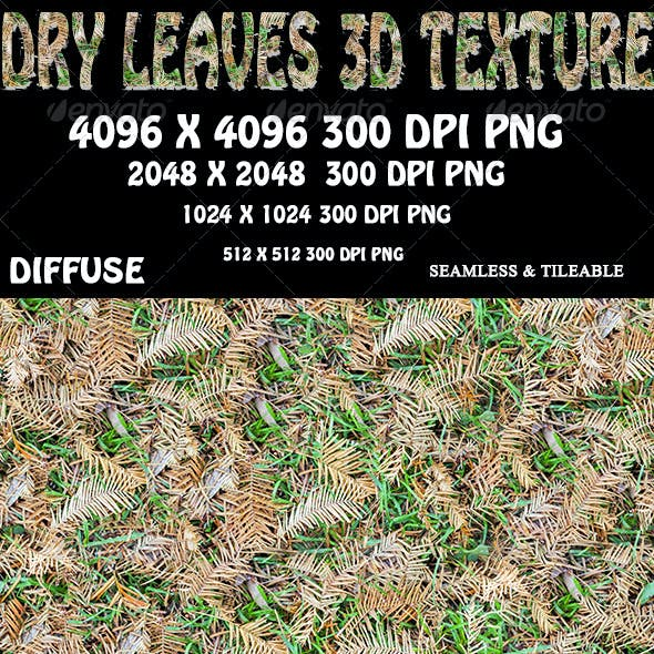 Dry Leaves 3D Texture