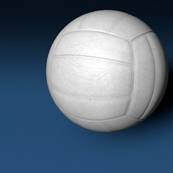 Generic Volleyball