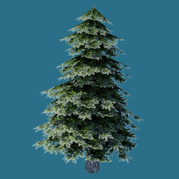 Low Poly Pine Tree Model
